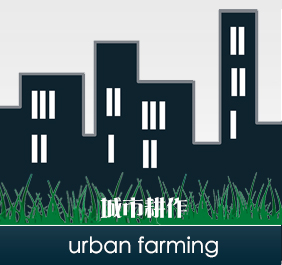 widget-urban-farming