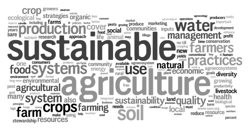 tumblr_static_sustainable_ag_wordle